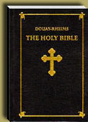 Douay-Rheims Traditional Catholic Holy Bible image