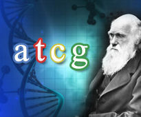 Proof: DNA Refutes Evolution - Click here to watch online for free